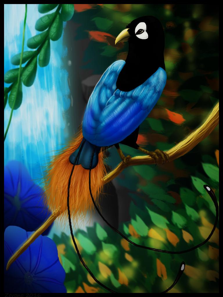 Bird of Paradise by Zevono