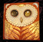 Owl of Flame Book
