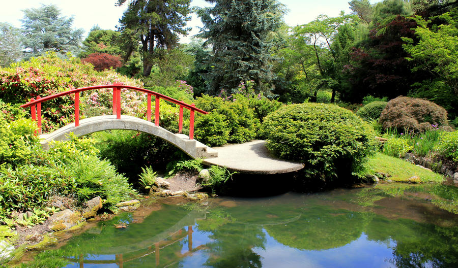 Seattle Japanese Garden By Gargoylefun ...