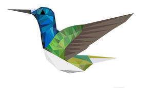 Abstract Humming bird