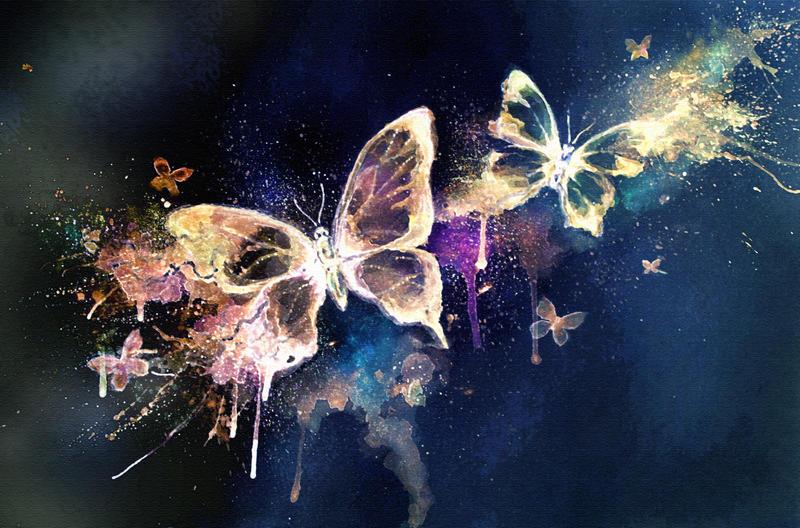 butterflies by catsandr