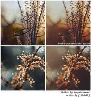 halah's autumn light action by HalaH-PSactions