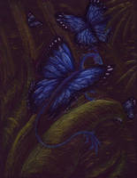 Butterfly Dragon by raerae
