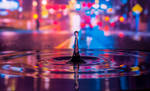 City lights puddle by carlessphotography