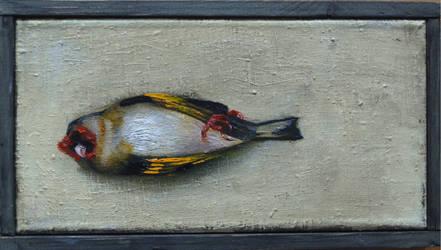 Dead bird by DawidZdobylak