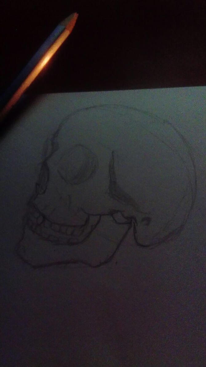 Skull 15th September2016 by Dripyz