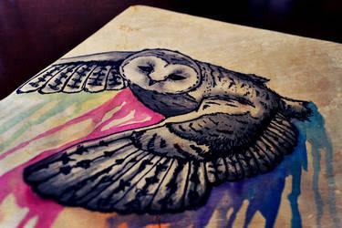 Owl in Flight by N3cromancy