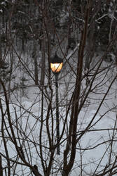 Narnia by N3cromancy