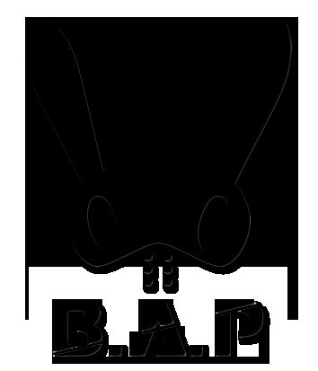 b_a_p_logo_png_by_sunnygc-d65ydzq.png