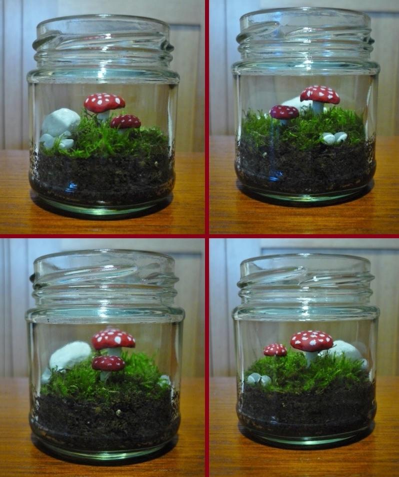 Little Mushrooms In Jar by Tash15