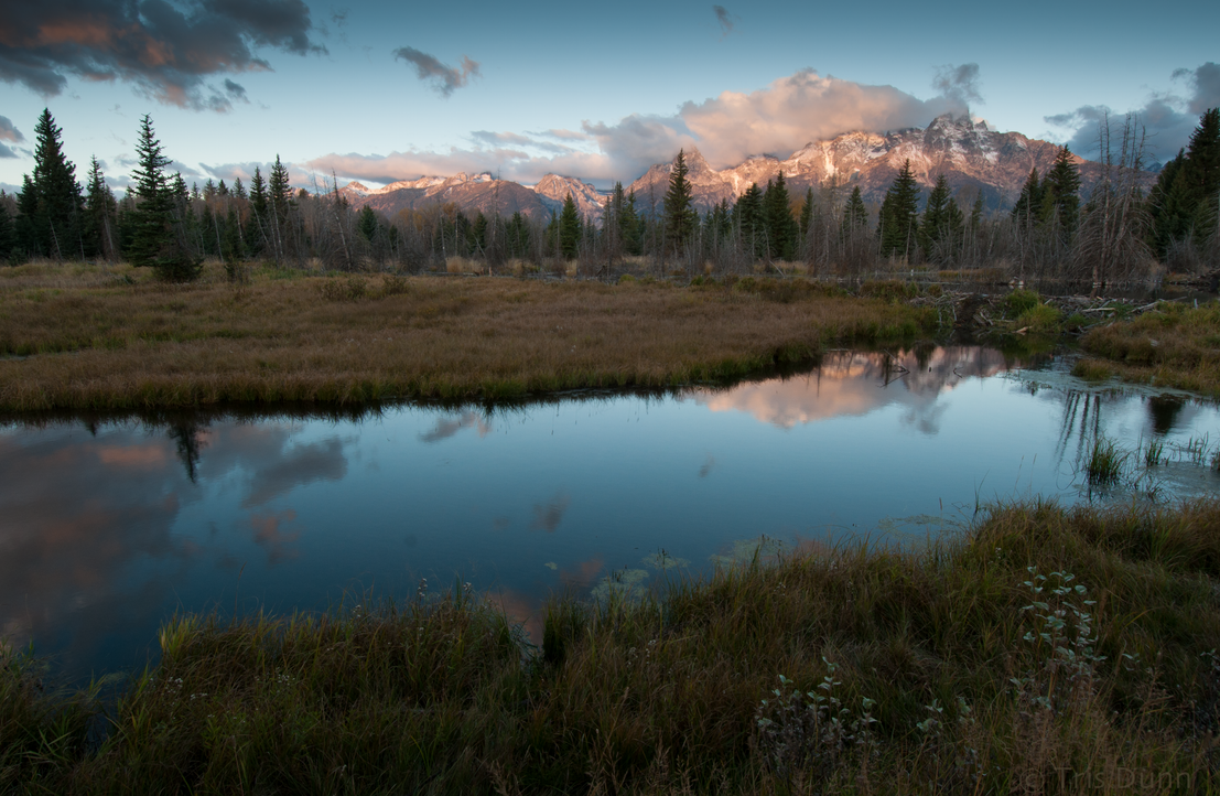 Morning in the Tetons by Pinedrop