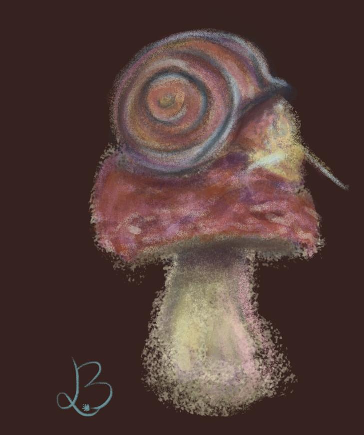 Snail on Mushroom by CharlieOleChap