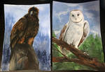 Golden Eagle and Barn Owl Paintings by Ink-Leviathan