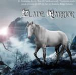 Blade Warrior Photomanipulation