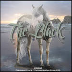 The Black (Stable Set)
