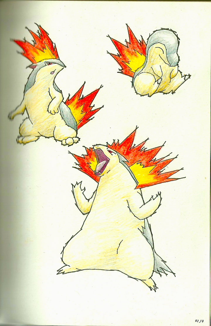 cyndaquil typhlosion quilava - photo #10