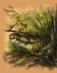 Crocodile Smirk