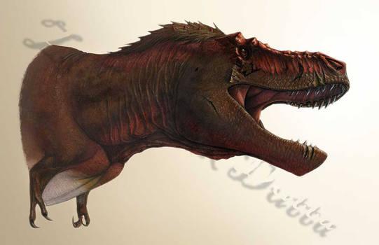Tyrannosaur Gape - Stan by amorousdino