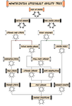 Nintaijutsu Specialty Tree