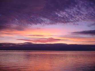 Blackcurrant Sunrise