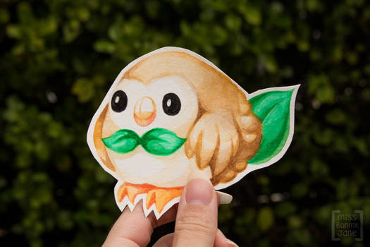 Pokemon - I choose Rowlet!