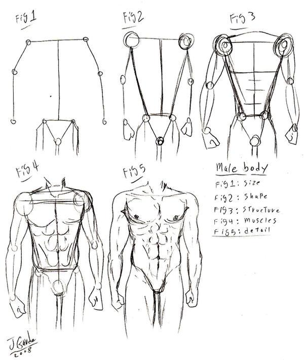 Basic Male Utter Body Tut By Destinyfall On Deviantart