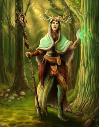 .DS Druid Female. by MalakiaLaGatta
