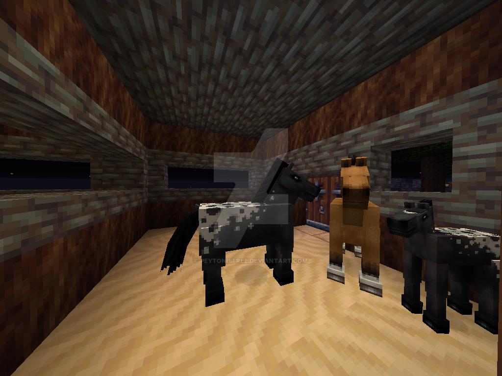 New Foal by peytonisfree