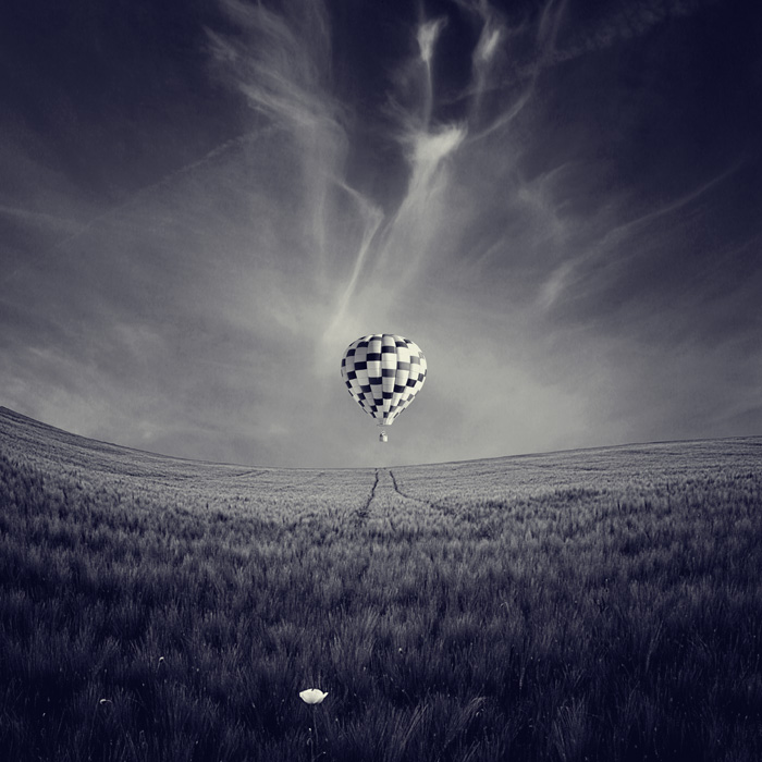 fin by luisbeltran