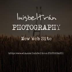 New Web Site by luisbeltran