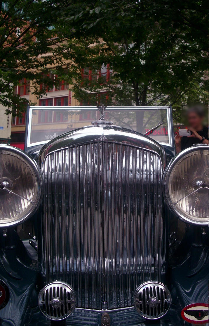Bentley by IcyWolf95