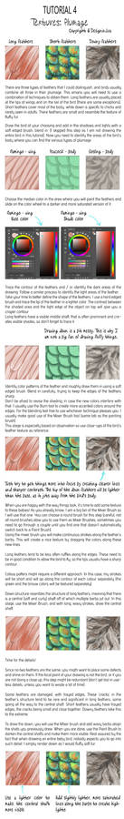 Tutorial Thursday - Tutorial 4: Plumage