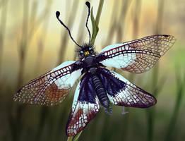 Milky owlfly