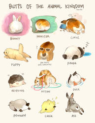 Animal Butts by Derlaine8