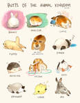 Animal Butts by Derlaine8