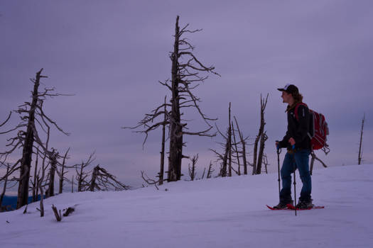 Snowshoeing on Mt. Cranbrook