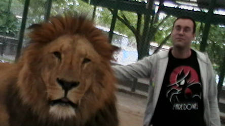 Lion and me hanging out, chilling and stuff