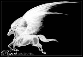 Pegasus for Mesteno by Kaljaia