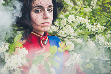 Flowers and Mist by Federkiel