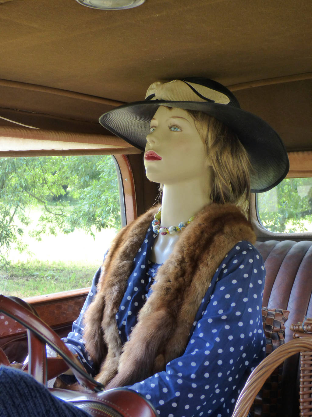 Driving Miss Daisy by Jaspersmum