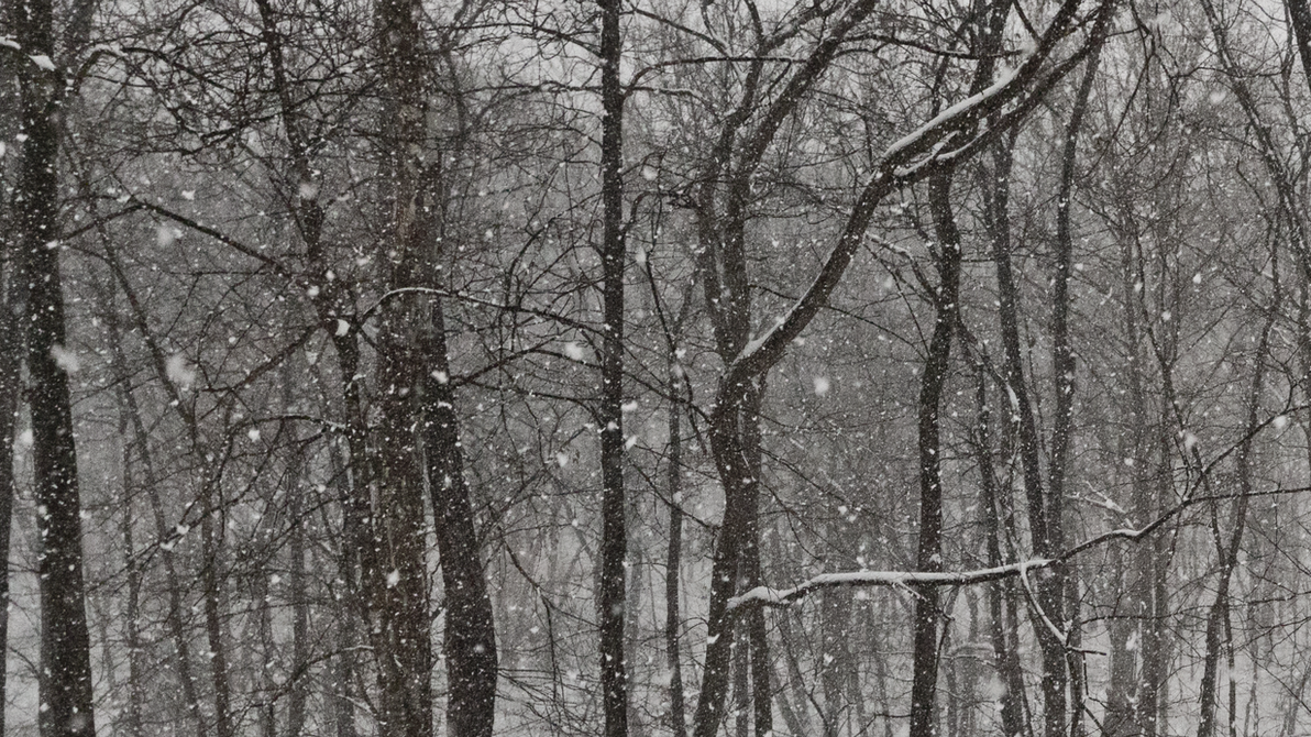 Snow Falling by PompatusOfLove