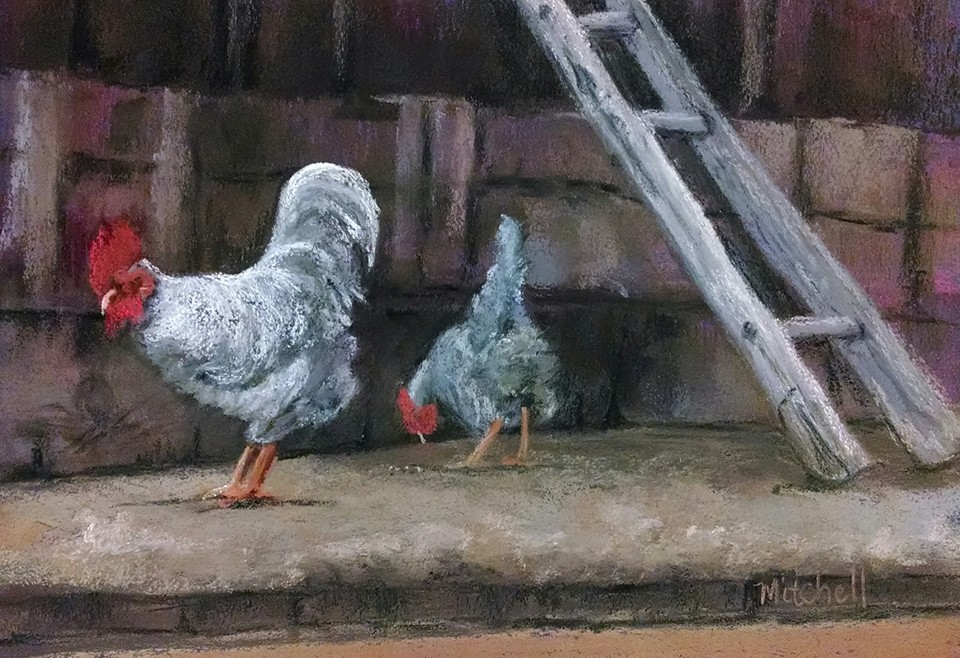 Chickens by MountainInspirations