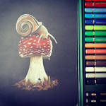 Mushroom and the snail