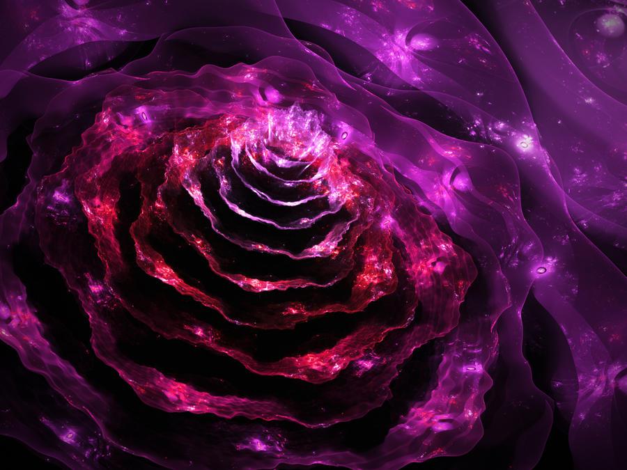 Violet bloom 1