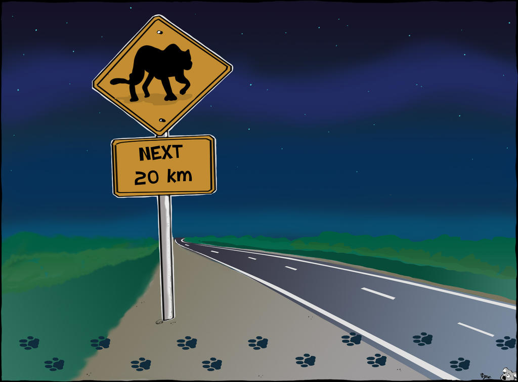 Pumas ahead by Sopecartoons
