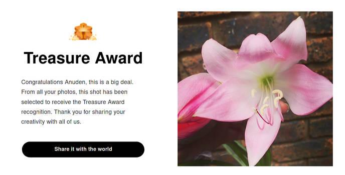 Viewbug- Treasure Award Jan 2021