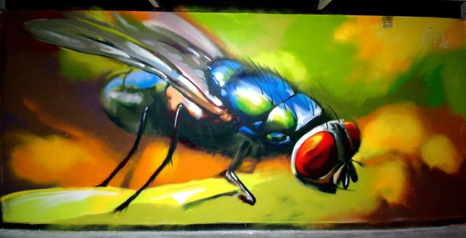 4aero fly streetart by aniaart