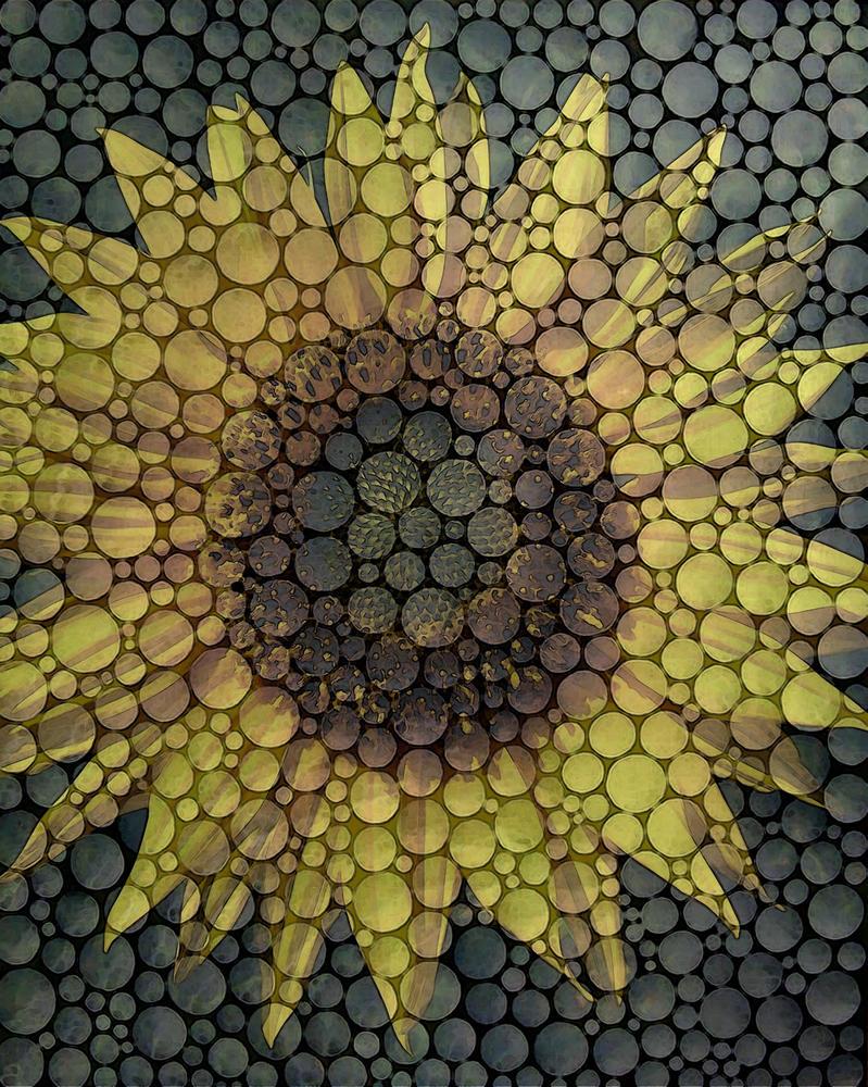 Bubbleflower by advertigo