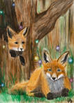 Foxes and Faeries