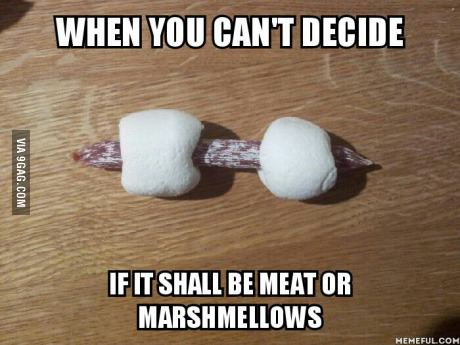 meat or marshmellows? by sullina3